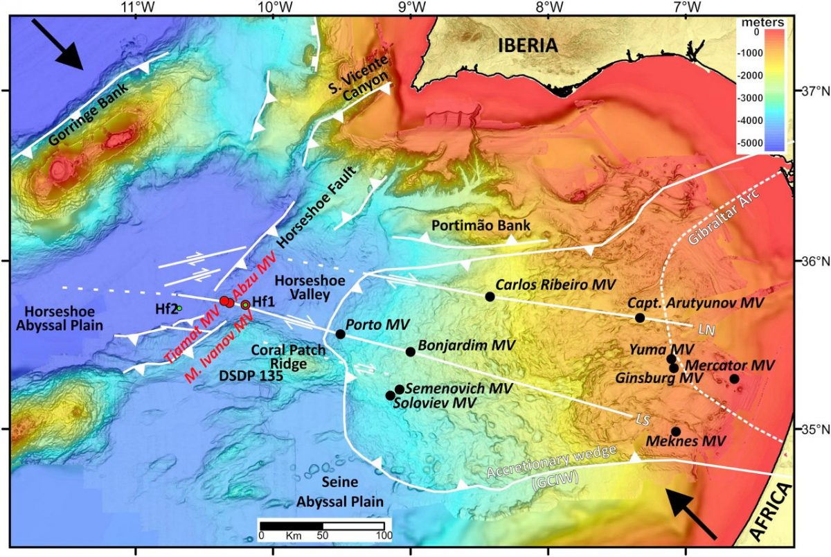 Formation and migration of hydrocarbons in deeply buried sediments of the Gulf of Cadiz convergent plate boundary