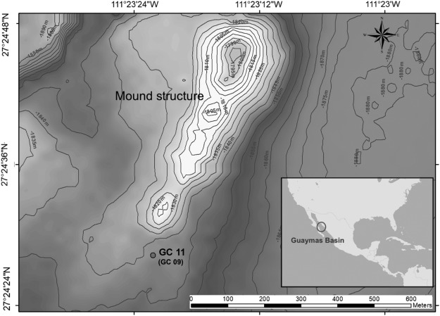 Article on the hydrothermal fluid emission in the Guaymas Basin